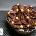 Σχέδια cupcakes melisoula