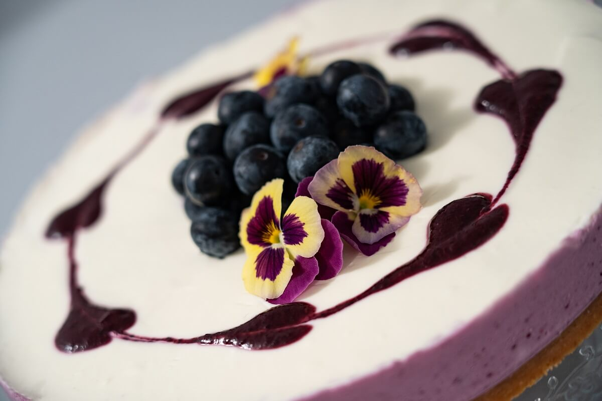 Cheesecake_blueberries
